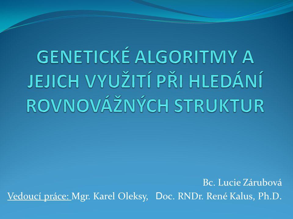 Genetické algoritmy a jejich využití při hledání rovnovážných struktur