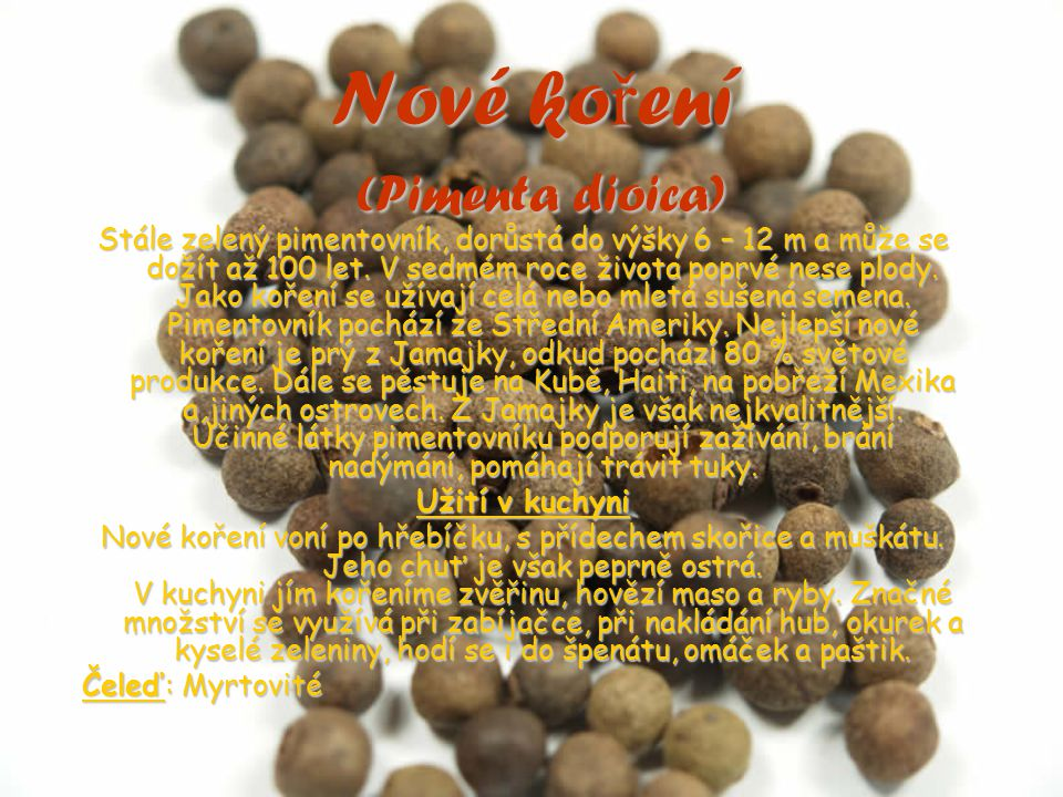 Nové koření (Pimenta dioica)