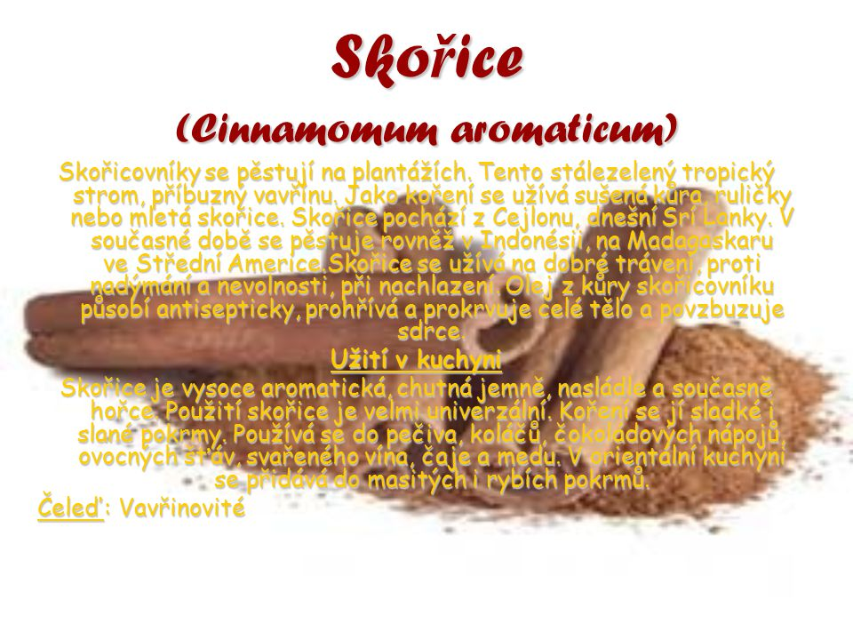 Skořice (Cinnamomum aromaticum)