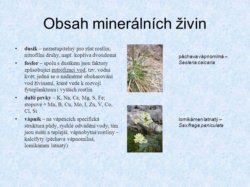 Obsah minerálních živin