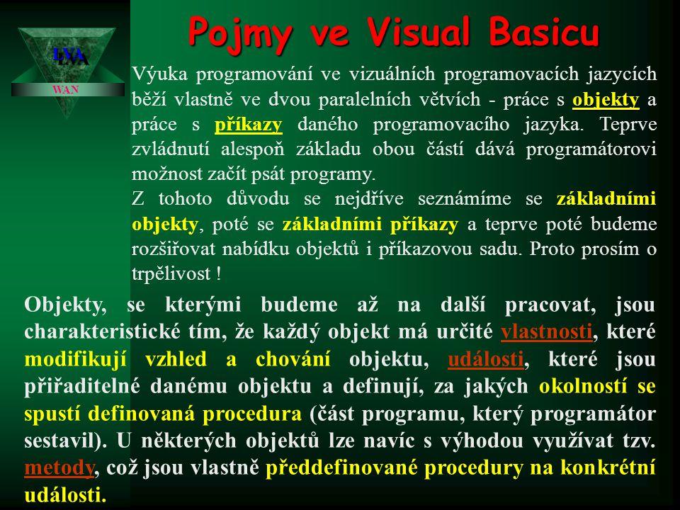 Pojmy ve Visual Basicu LVA.