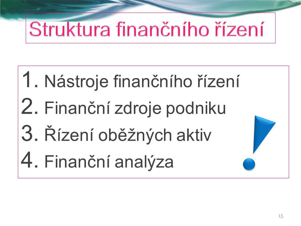 Struktura finančního řízení