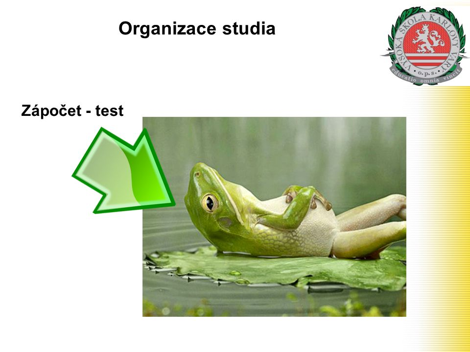 Organizace studia Zápočet - test