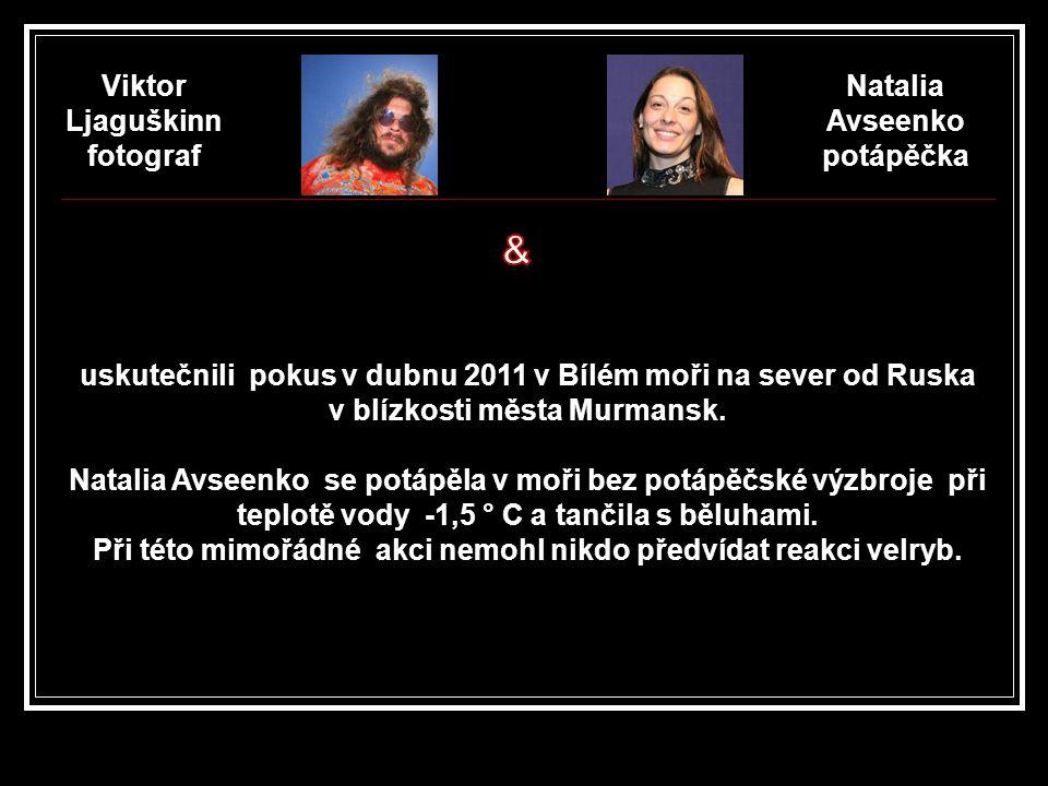 & Viktor Ljaguškinn fotograf Natalia Avseenko potápěčka