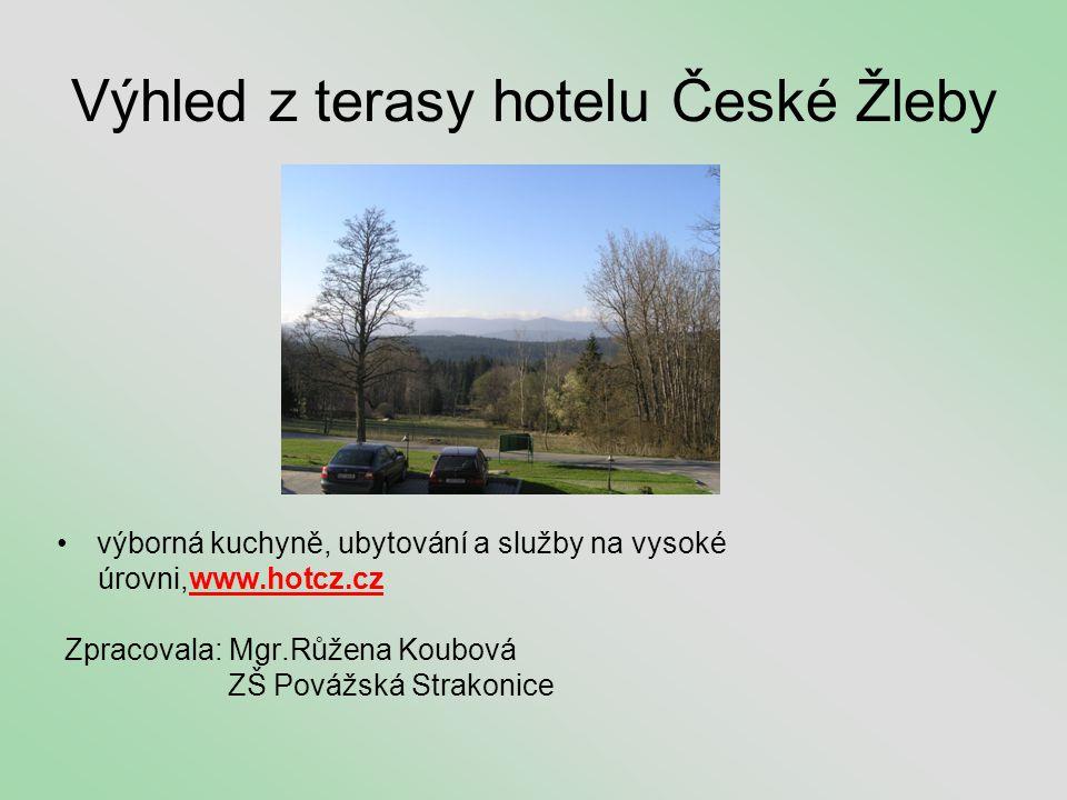 Výhled z terasy hotelu České Žleby