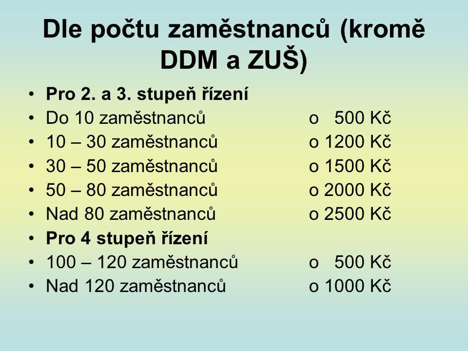Dle počtu zaměstnanců (kromě DDM a ZUŠ)