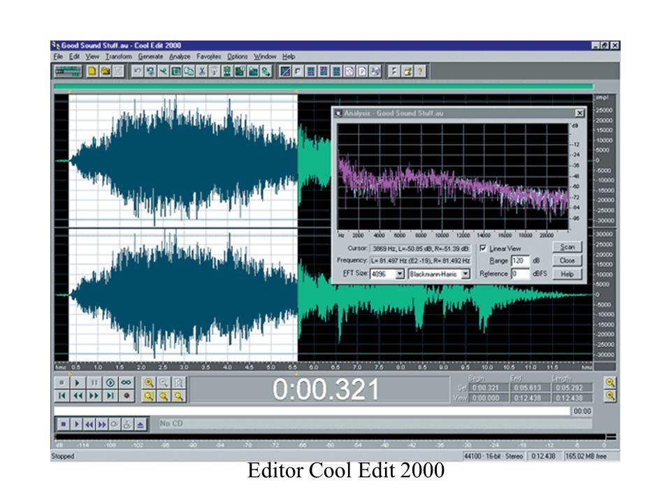 Editor Cool Edit 2000