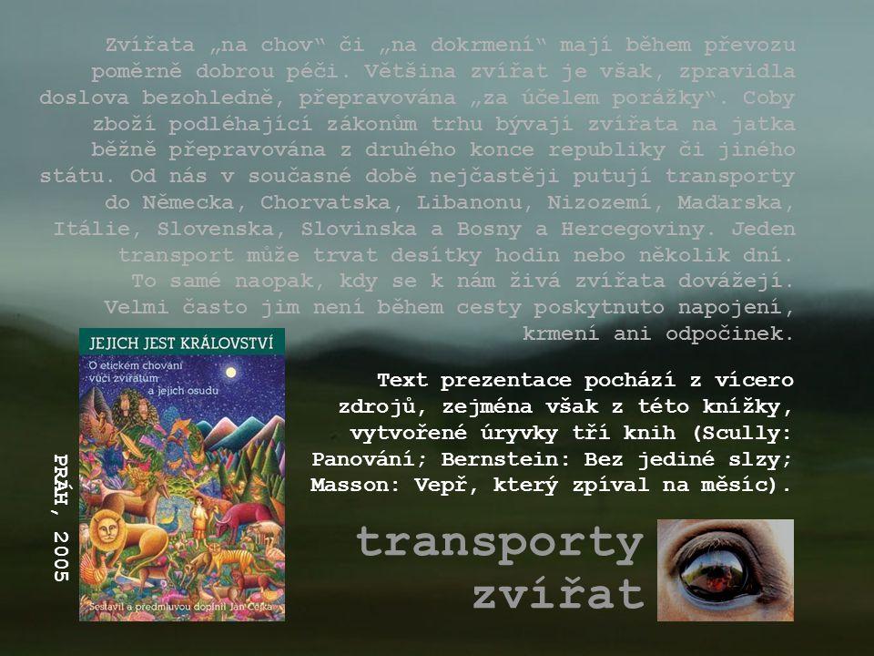 """Zvířata """"na chov či """"na dokrmení mají během převozu poměrně dobrou péči. Většina zvířat je však, zpravidla doslova bezohledně, přepravována """"za účelem porážky . Coby zboží podléhající zákonům trhu bývají zvířata na jatka běžně přepravována z druhého konce republiky či jiného státu. Od nás v současné době nejčastěji putují transporty do Německa, Chorvatska, Libanonu, Nizozemí, Maďarska, Itálie, Slovenska, Slovinska a Bosny a Hercegoviny. Jeden transport může trvat desítky hodin nebo několik dní. To samé naopak, kdy se k nám živá zvířata dovážejí. Velmi často jim není během cesty poskytnuto napojení, krmení ani odpočinek."""