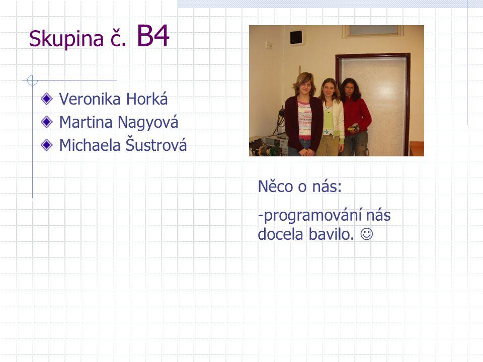 Skupina č. B4 Veronika Horká Martina Nagyová Michaela Šustrová