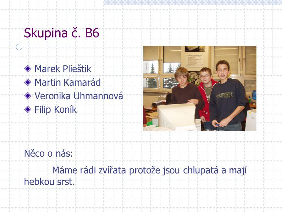 Skupina č. B6 Marek Plieštik Martin Kamarád Veronika Uhmannová