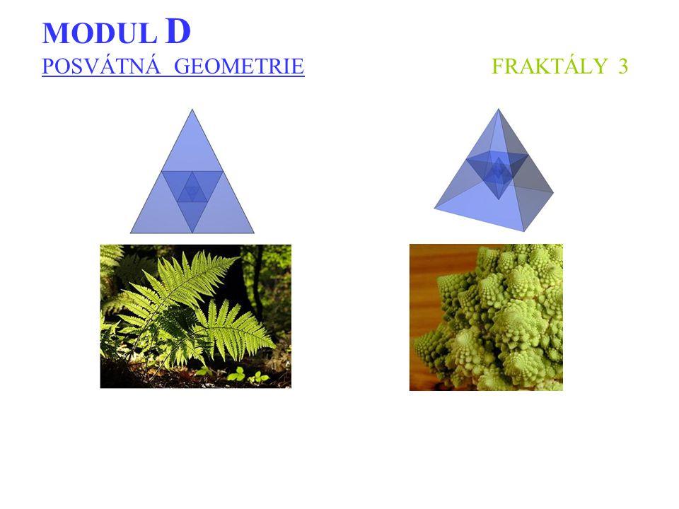 MODUL D POSVÁTNÁ GEOMETRIE FRAKTÁLY 3