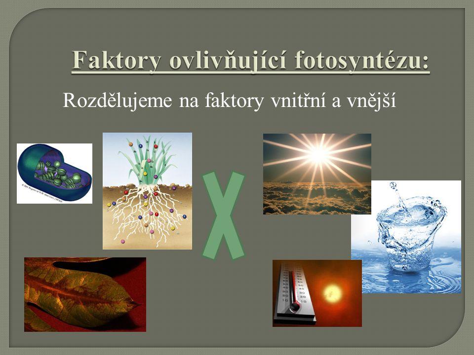 Faktory ovlivňující fotosyntézu: