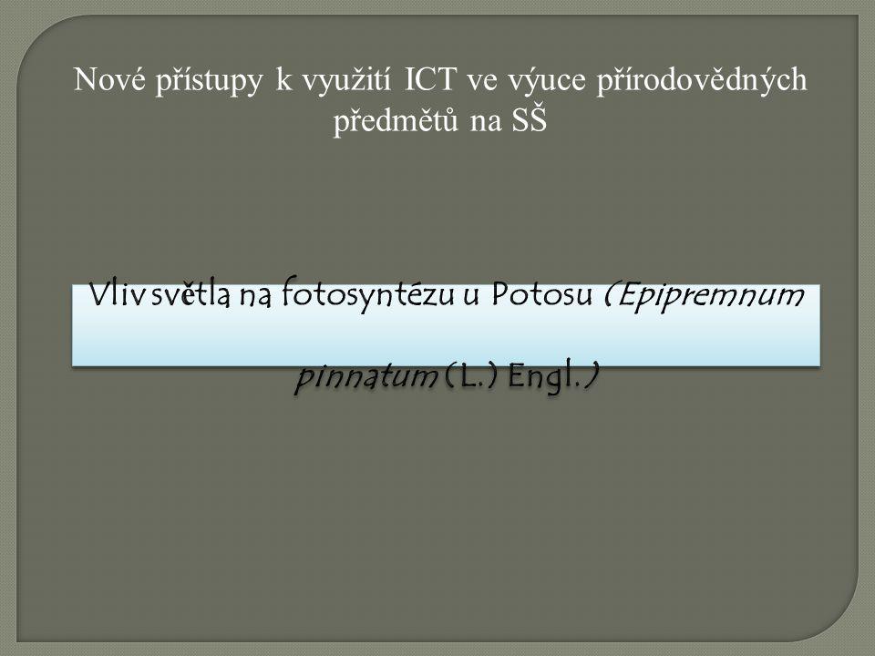 Vliv světla na fotosyntézu u Potosu (Epipremnum pinnatum (L.) Engl.)