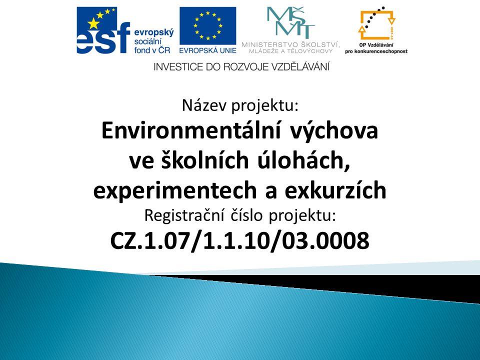 Environmentální výchova