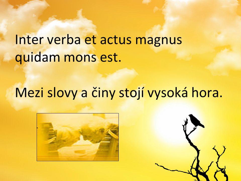 Inter verba et actus magnus quidam mons est