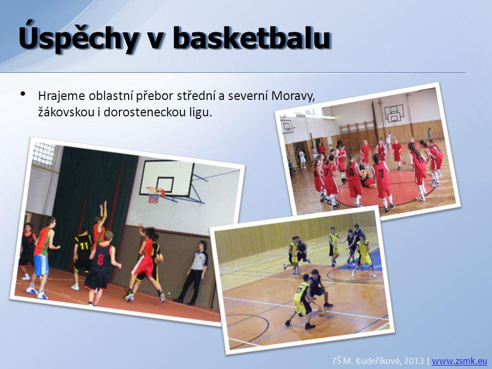 Úspěchy v basketbalu Úspěchy v basketbalu