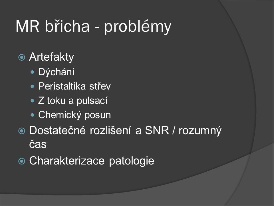 MR břicha - problémy Artefakty