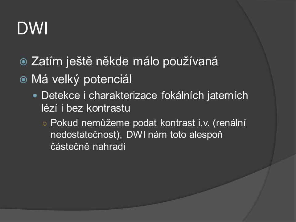 DWI Zatím ještě někde málo používaná Má velký potenciál