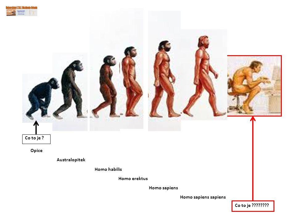 Co to je . Co to je . Opice. Australopitek.