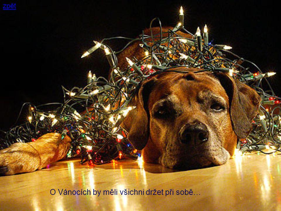 O Vánocích by měli všichni držet při sobě…