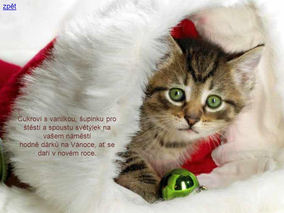 zpět Cukroví s vanilkou, šupinku pro štěstí a spoustu světýlek na vašem náměstí hodně dárků na Vánoce, ať se daří v novém roce.
