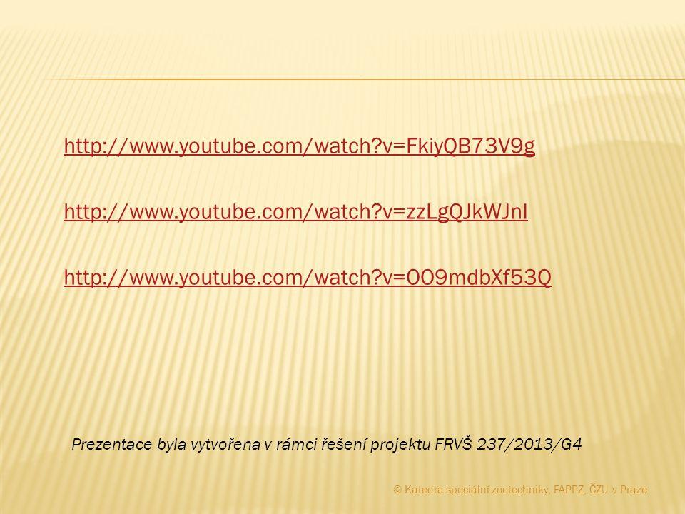 http://www. youtube. com/watch. v=FkiyQB73V9g http://www. youtube