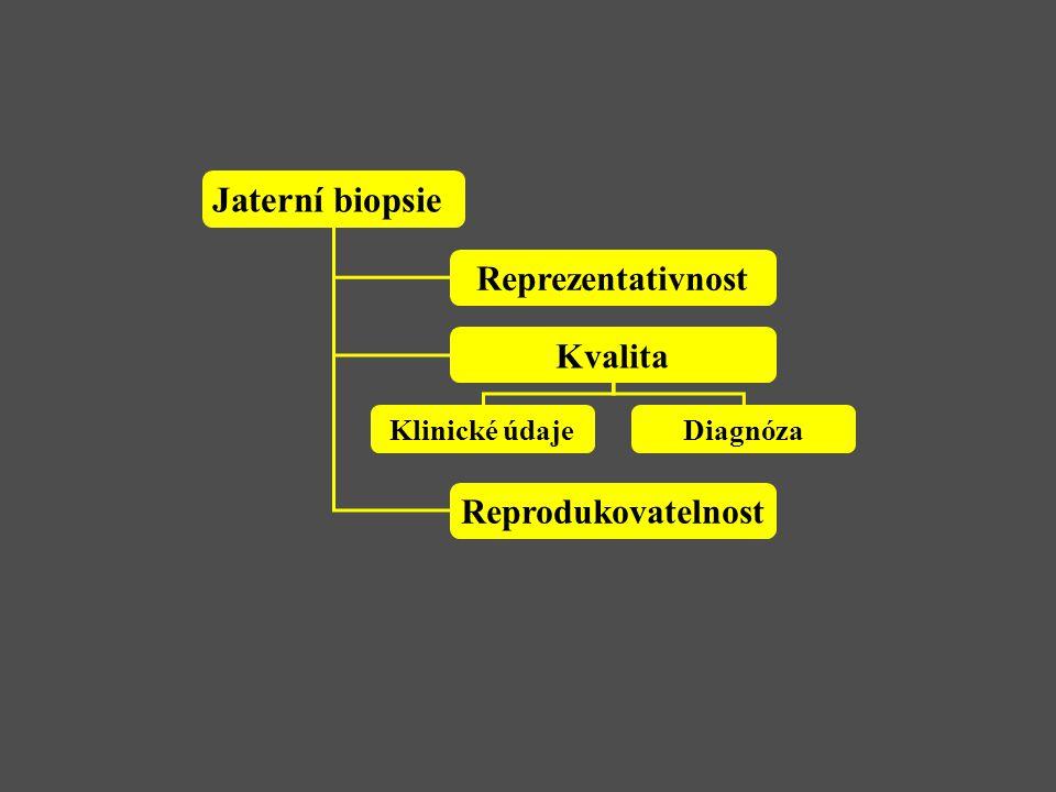 Jaterní biopsie Reprezentativnost Kvalita Reprodukovatelnost