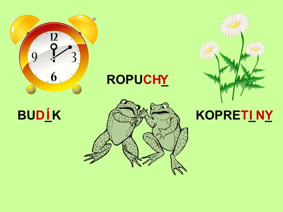 ROPUCH_ Y BUD_K Í KOPRET_N_ I Y