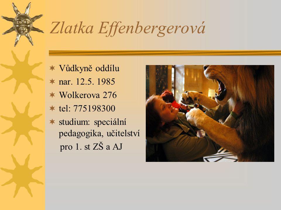 Zlatka Effenbergerová