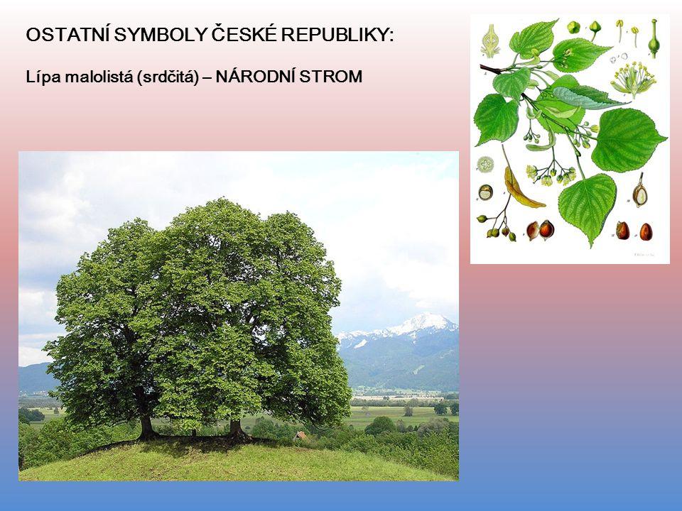 OSTATNÍ SYMBOLY ČESKÉ REPUBLIKY: