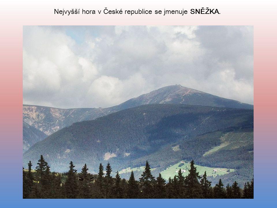 Nejvyšší hora v České republice se jmenuje SNĚŽKA.