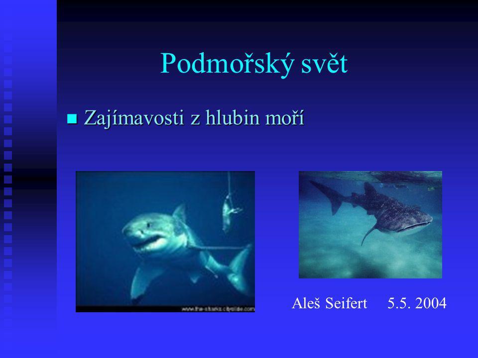 Podmořský svět Zajímavosti z hlubin moří Aleš Seifert 5.5. 2004