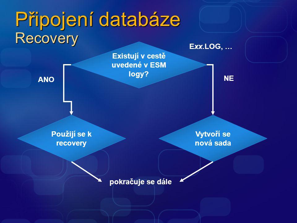 Připojení databáze Recovery
