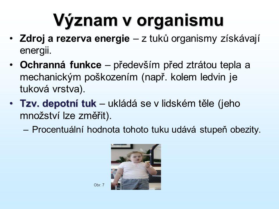 Význam v organismu Zdroj a rezerva energie – z tuků organismy získávají energii.
