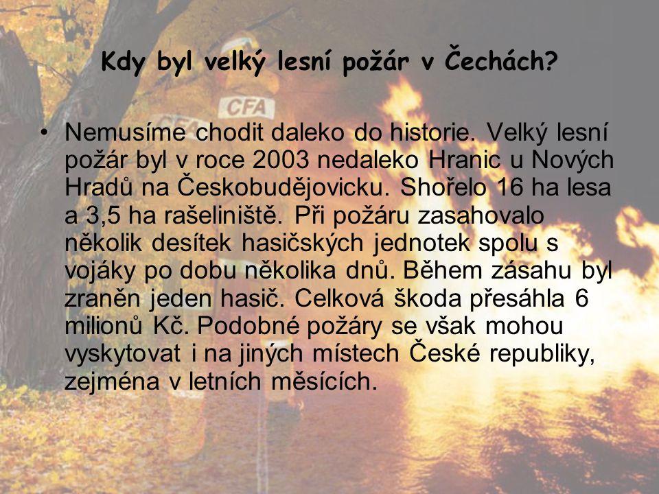 Kdy byl velký lesní požár v Čechách