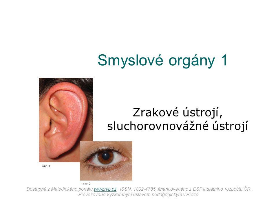Zrakové ústrojí, sluchorovnovážné ústrojí