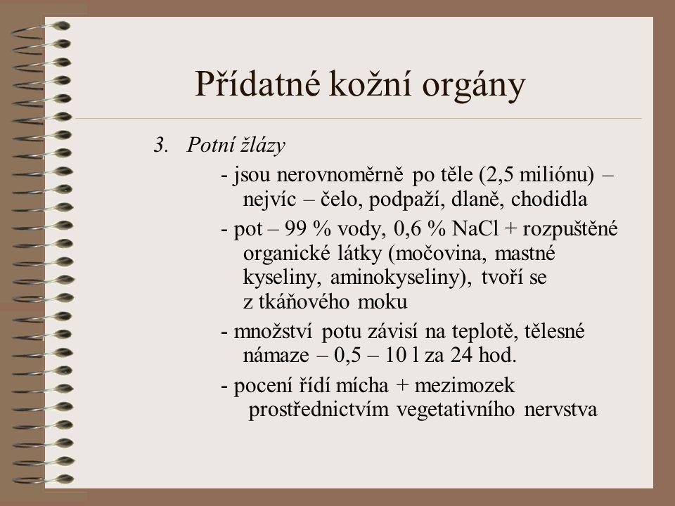 Přídatné kožní orgány Potní žlázy