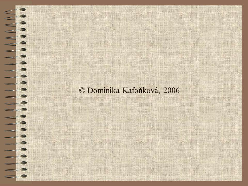 © Dominika Kafoňková, 2006