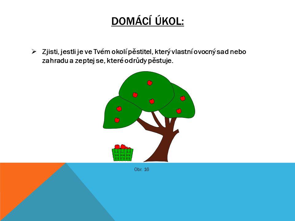 Domácí úkol: Zjisti, jestli je ve Tvém okolí pěstitel, který vlastní ovocný sad nebo zahradu a zeptej se, které odrůdy pěstuje.