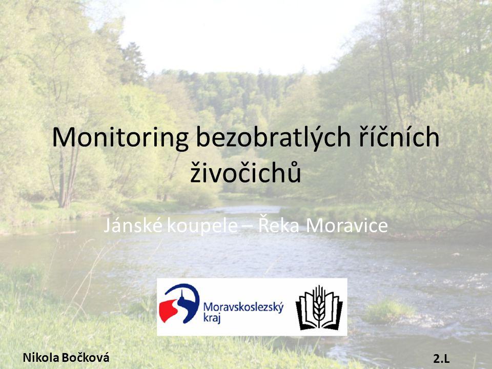 Monitoring bezobratlých říčních živočichů