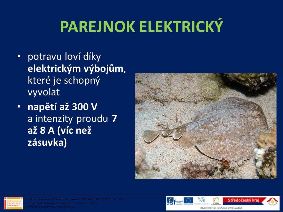 PAREJNOK ELEKTRICKÝ potravu loví díky elektrickým výbojům, které je schopný vyvolat. napětí až 300 V a intenzity proudu 7 až 8 A (víc než zásuvka)