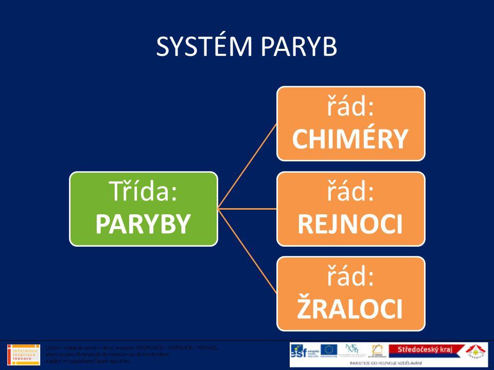 SYSTÉM PARYB Třída: PARYBY. řád: CHIMÉRY. řád: REJNOCI. řád: ŽRALOCI.