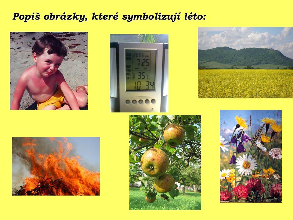 Popiš obrázky, které symbolizují léto:
