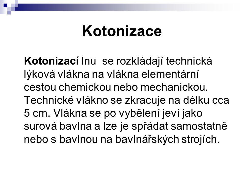 Kotonizace