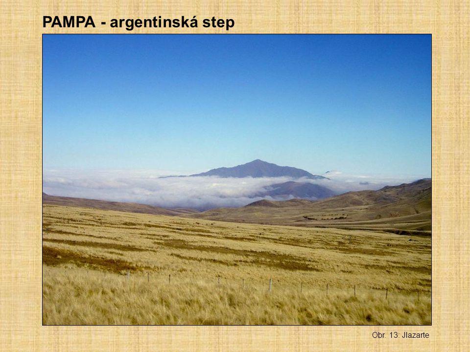 PAMPA - argentinská step