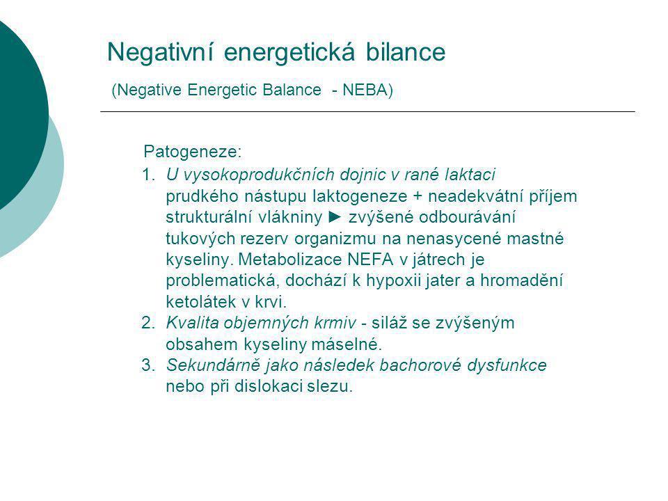 Negativní energetická bilance (Negative Energetic Balance - NEBA)