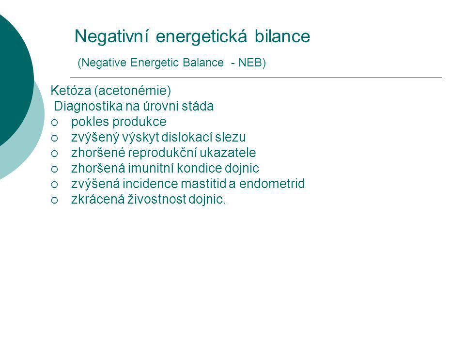 Negativní energetická bilance (Negative Energetic Balance - NEB)