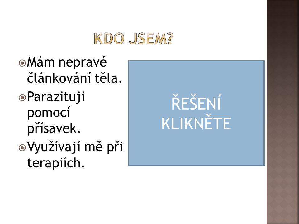 ŘEŠENÍ KLIKNĚTE Kdo jsem Mám nepravé článkování těla.