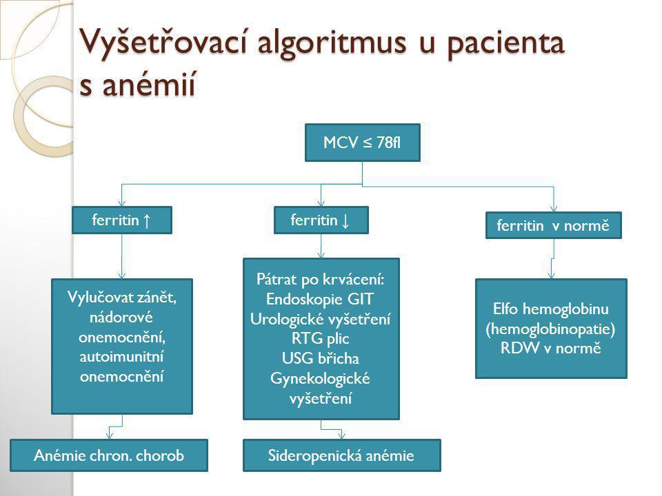 Vyšetřovací algoritmus u pacienta s anémií
