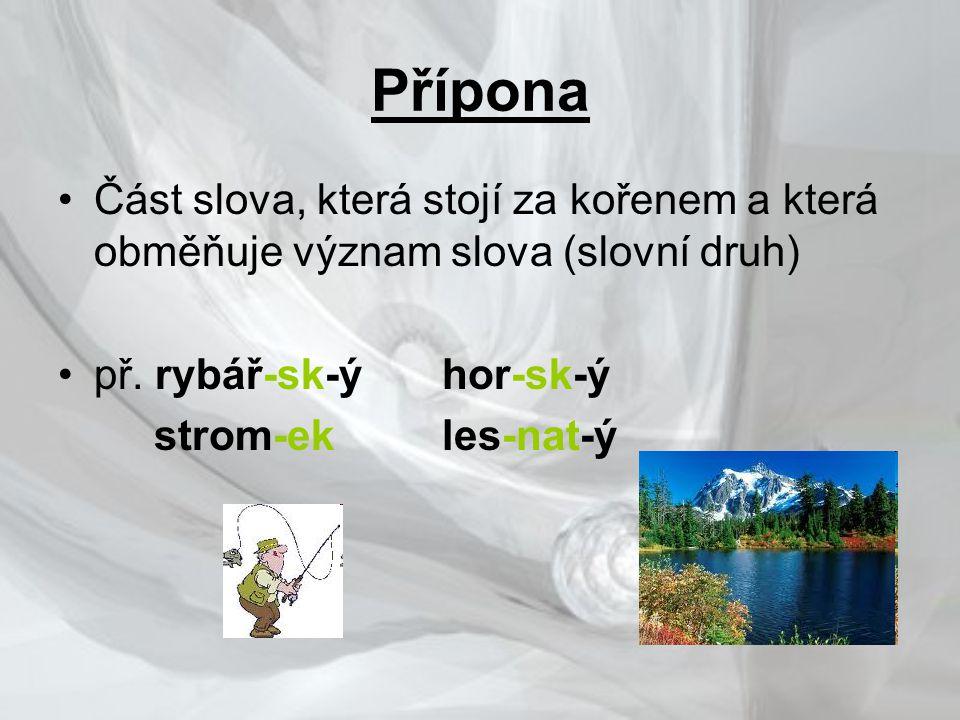 Přípona Část slova, která stojí za kořenem a která obměňuje význam slova (slovní druh) př. rybář-sk-ý hor-sk-ý.